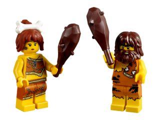 LEGO® Iconic Höhlenset